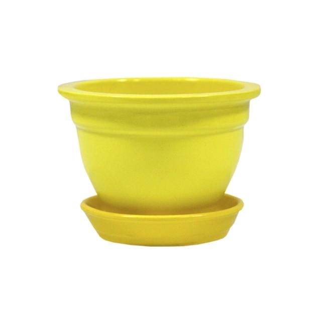 Fialochnitsa Gloss Yellow